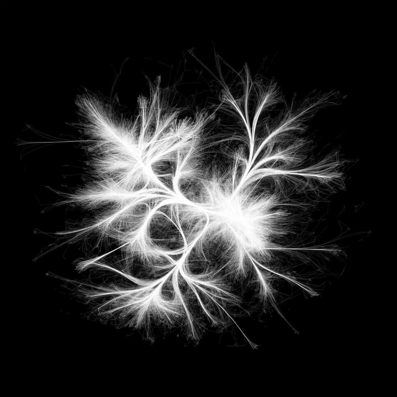 Eine Visualisierung eines Netzwerks aus weißen Strängen auf schwarzem Hintergrund, die sich nach außen hin zerfransen