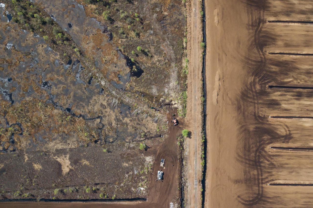 Moorlandschaft, Dronenblick von oben. Die Landschaft erscheint zweigeteilt: Links das Moor, rechts eine Fläche aus Torf, die in gleiche Teile unterteilt ist.