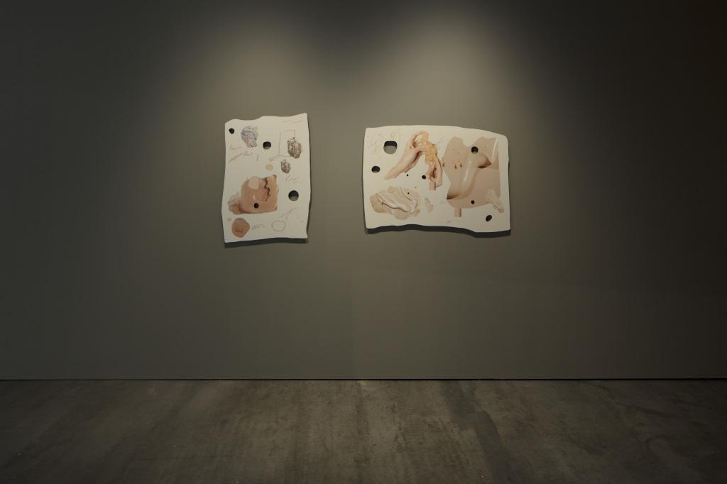 Zwei nebeneinander aufgehängte Bilder mit hautfarbenen bearbeiteten Fotografien