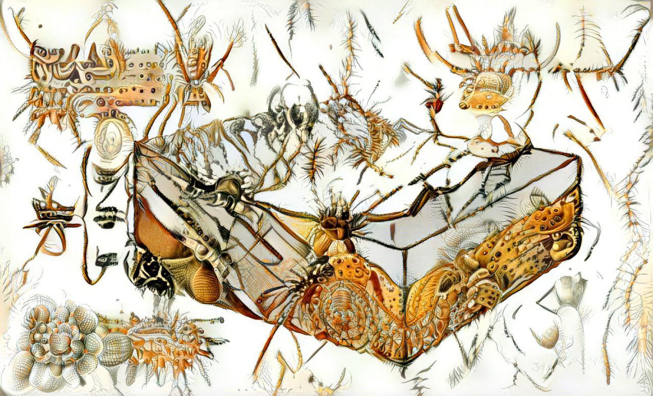 Das Foto zeigt eine Zeichnung auf der ein Querschnitt des Bodens und der verschiedenen Sedimente abgebildet ist. Die Bodenschichten verbergen nach genaueren hingucken verschiedene Insekten, wie Spinnen oder Käfer..