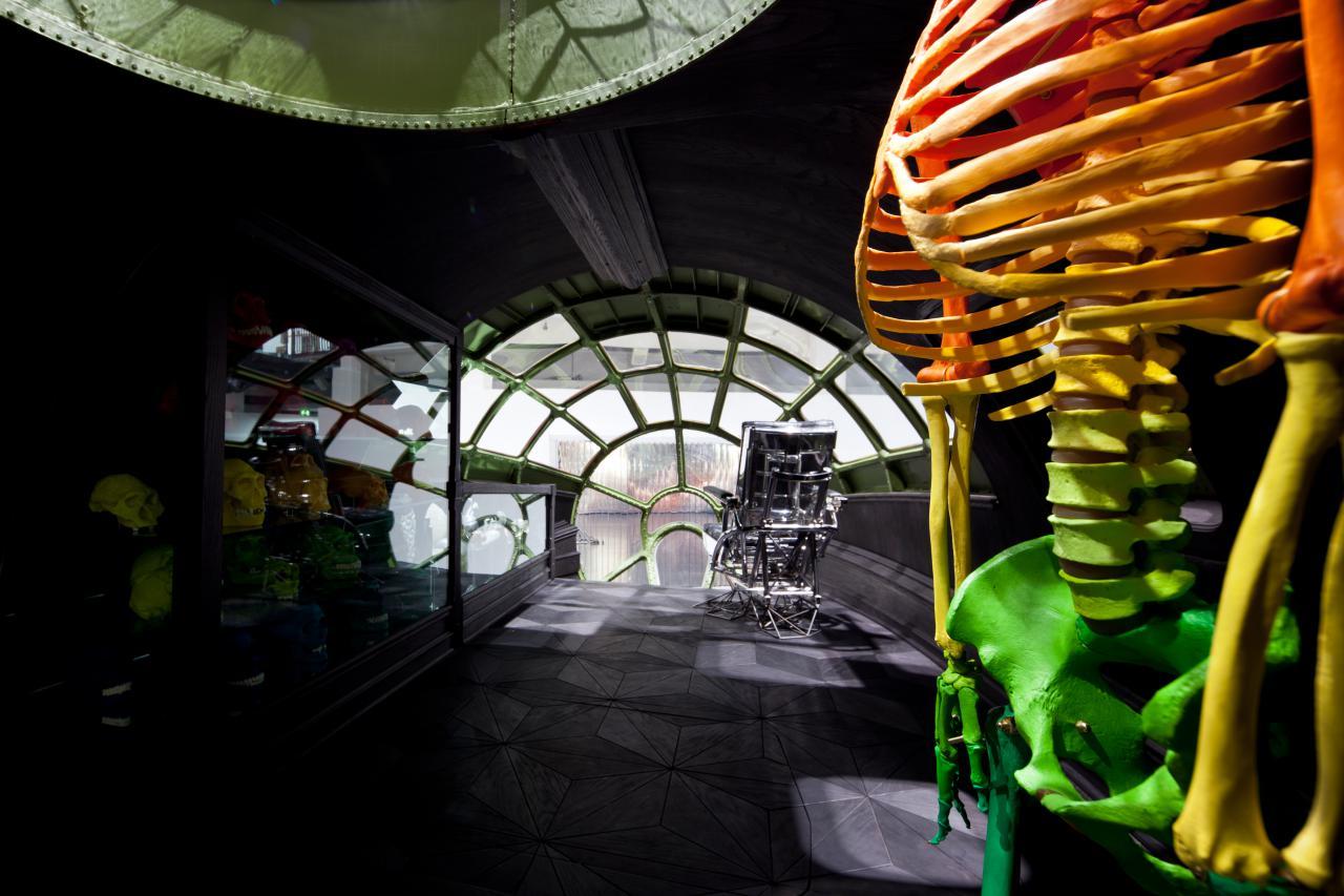 Zu sehen ist ein buntes Skelett im rechten Bildranf, das in einem runden, dunklen Raum steht. Hinter ihm mündet der Raum in einer Fensterfront aus vielen kleinen Fenstern. Links im Bild ist eine Vitrine zu sehen, in der sich bunte Totenköpfe befinden.