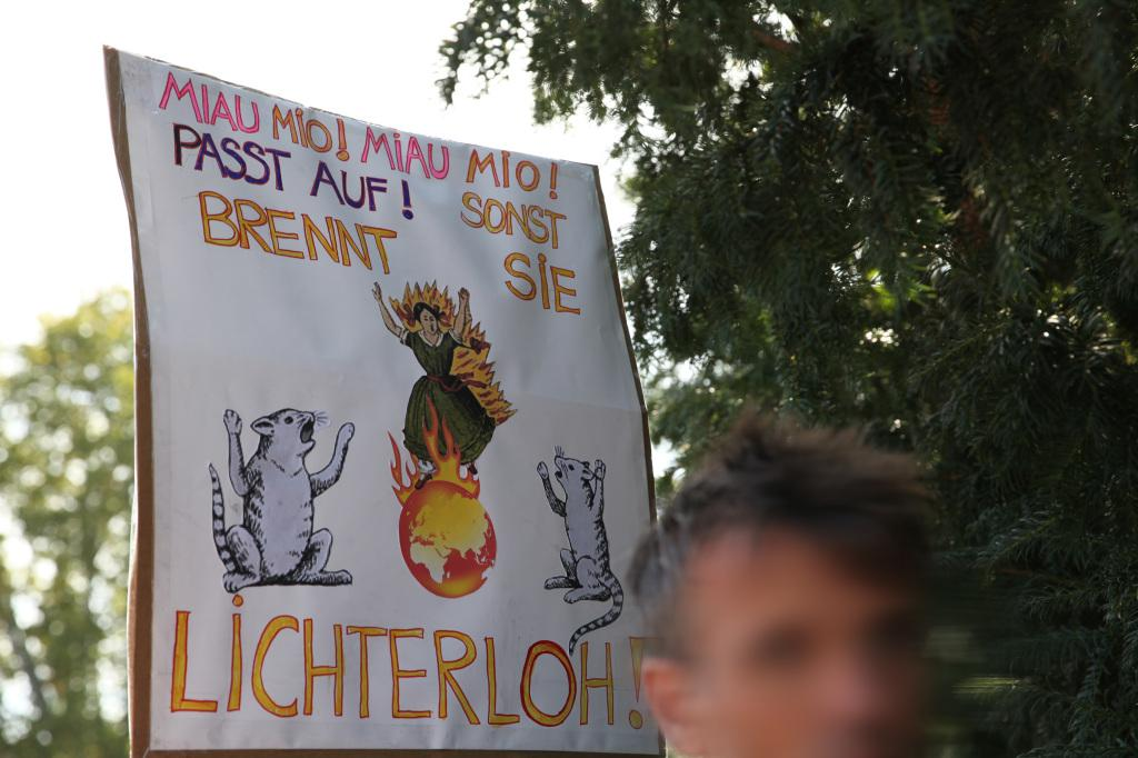 The poster shown was held up by students during the Fridays for Future demonstration on 20 September 2019. It shows a burning globe.