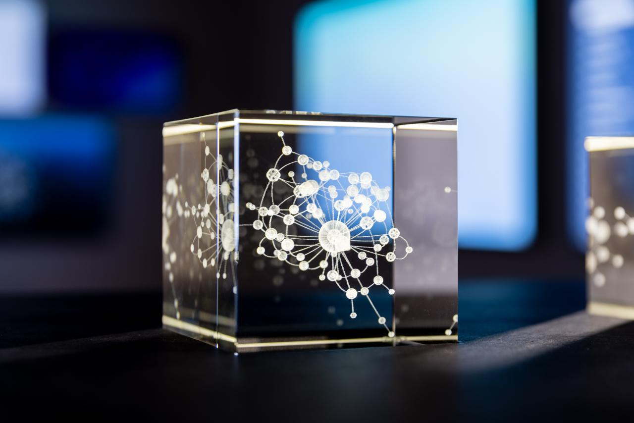 A close-up of a small glass box engraved with a network.