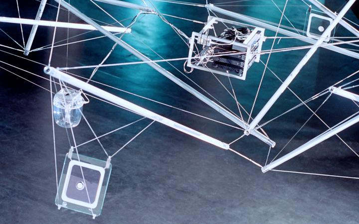 "Installationsansicht ""Web of Life"""