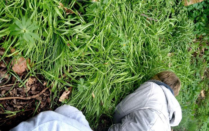 Auf einer grünen Wiese kniet sich eine Person mit ihrem Gesicht auf dem Boden hin.