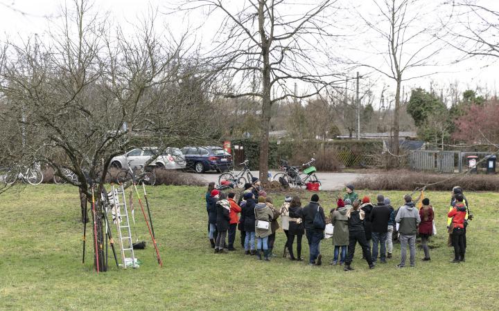 Eine Gruppe von Menschen steht auf einer Wiese neben einem Baum.