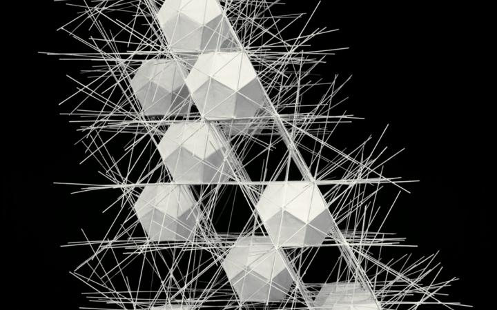 Polyhedral Net Structure #2
