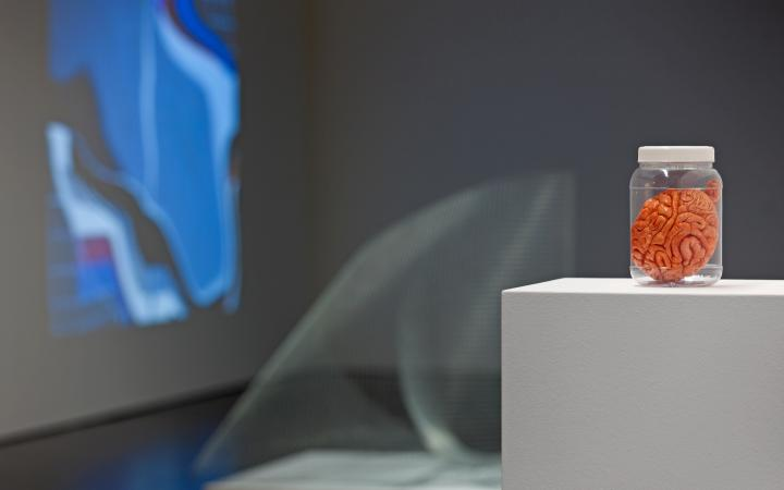 Ausstellungsansicht Sensor 02
