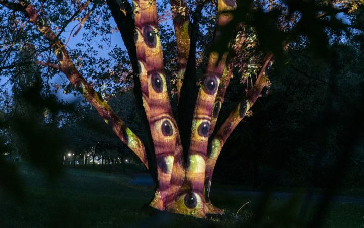 Zu sehen ist ein Baum in der Nacht. Auf den Baumstamm sind Augen projiziert.