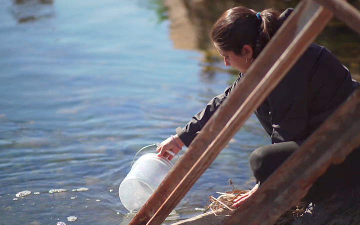 Einzelbild eines der beiden Videos des Werkes Hidroscopia Loa. Man sieht wie die Künstlerin Claudia González Godoy eine Wasserprobe aus dem Fluss Loa entnimmt.