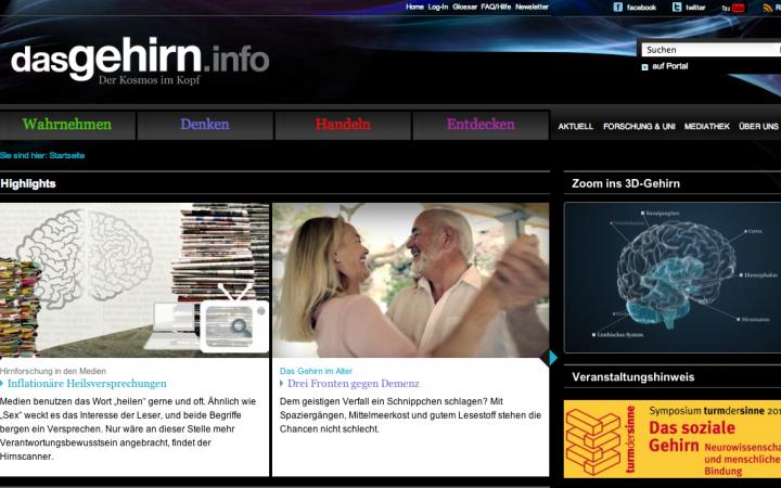 Screenshot der Internetseite www.dasgehirn.info