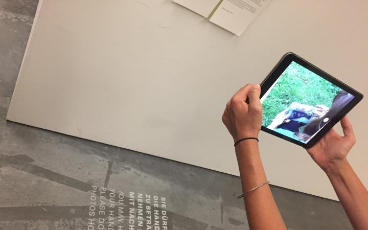 Someone is holding the camera of an iPad on a wall. On the iPad you can see a green meadow.