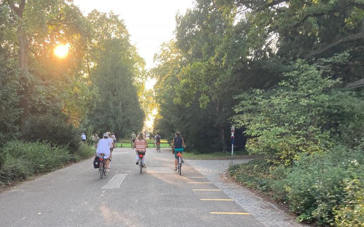 Drei Menschen fahren auf ihren Fahrrädern im Karlsruher Schlossgarten der untergehenden Sonne entgegen.
