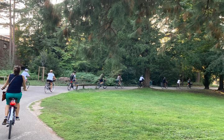 Eight people ride their bicycles in a wide arc one behind the other around a lawn in Schlossgarten Karlsruhe.