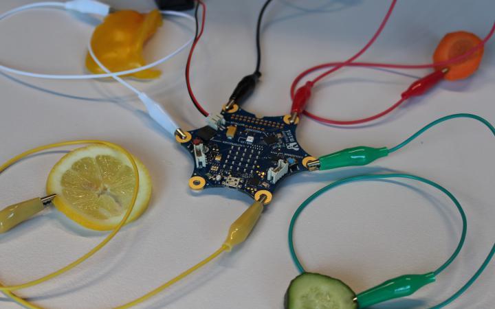 Wir sehen einen Calliope mini, von dem mehrere Kabel weg führen. An deren Enden wiederum verschiedenes Gemüse angeschlossen ist.