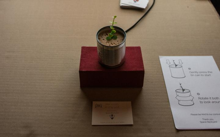 A plant grows out of a can that is connected to a screen.