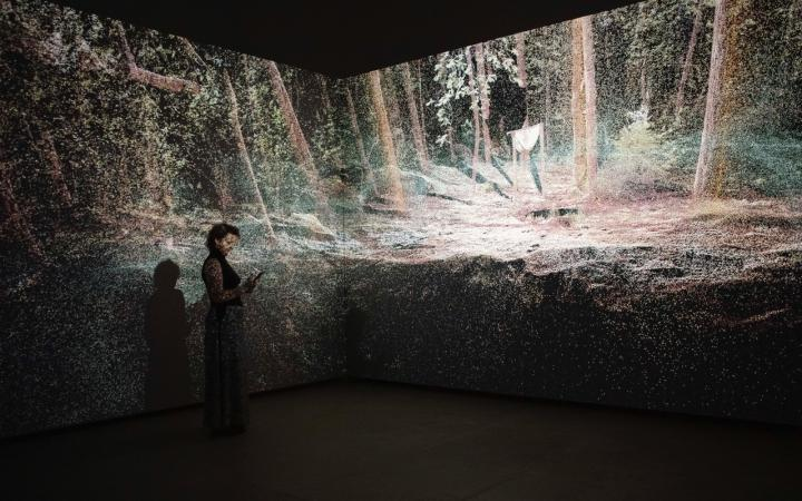 You can see a woman standing in front of two illuminated walls. Projected is a forest