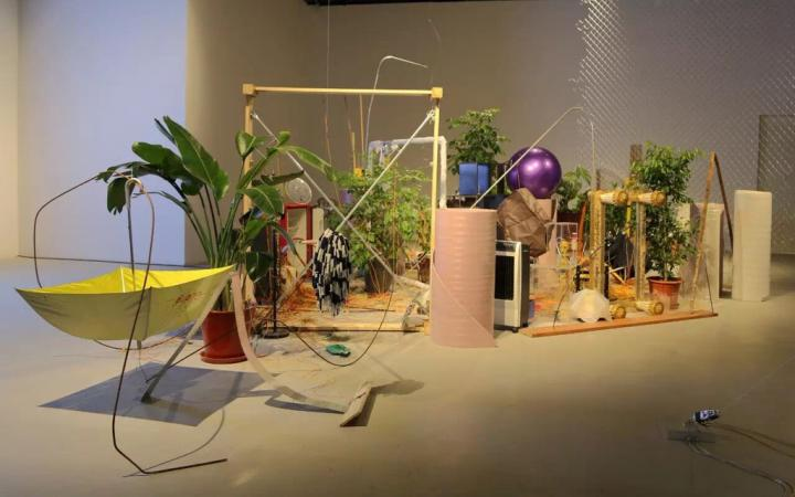 The photo shows an installation of plants and assembled objects.