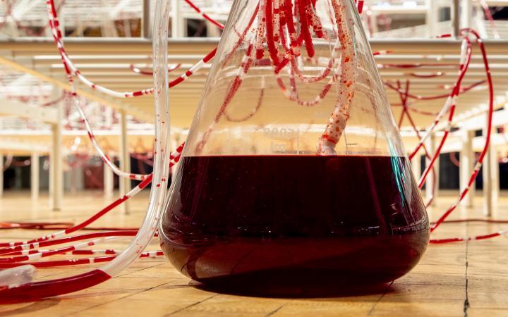 Ausschnitt von Chiharu Shiotas »Connected to Life«. Zu sehen ist ein gläserner, trichterförmiger Behälter, gefüllt mit roter Flüssigkeit und aus ihm herausragenden Schläuchen.