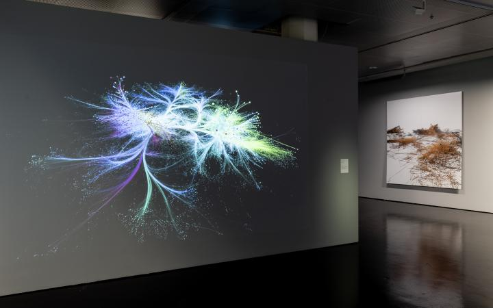 Two large canvases. The left one shows a network that spreads from the inside to the outside. The right one shows a network like small piles lying next to each other.