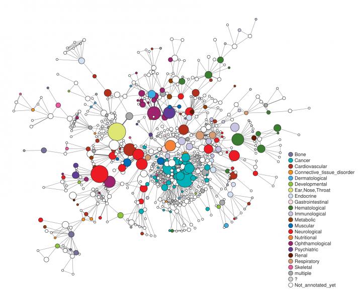 Ein Netzwerk von verschiedenen Krankheiten, dargestellt durch vernetzte Punkte in unterschiedlichen Farben