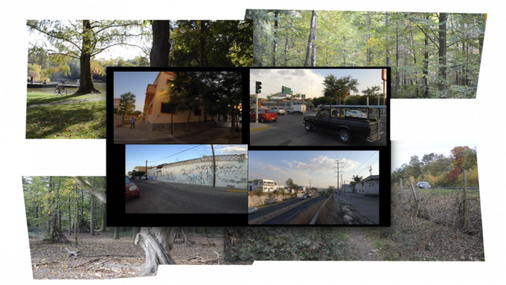Zu sehen sind 4 Screens, über weiteren 4 Screens mir Landschaftsausschnitten.
