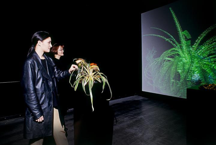 Werk - The Interactive Plant Growing
