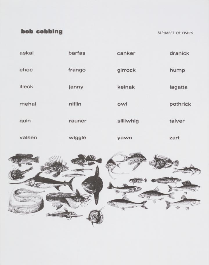 Alphabet of Fishes