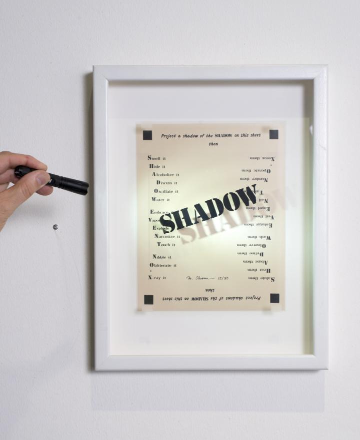 Shadow Event No. X