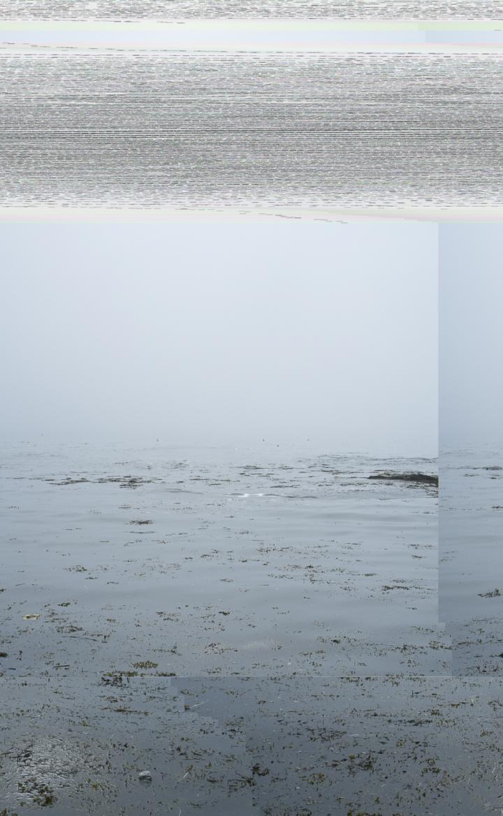 20150714-DSCF9296_3.tif, Bailey Island, Maine (seascape), 20150714-DSCF9296_3.txt, Bailey Island, Maine (seascape)
