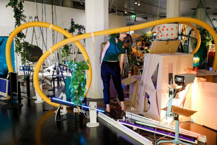 Das Foto zeigt einen Einblick in die Performance des Eröffnungsabends inmitten einer Kunstinalllation aus Pflanzen, Pappe und Plastikrohren