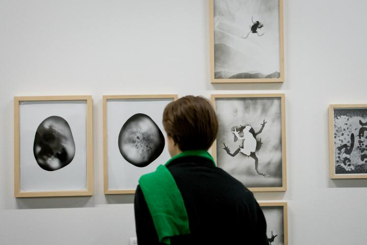 A woman with a green scarf looks at several black and white images on a wall