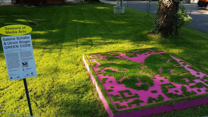 Zu sehen ist eine Schablone, die auf einer Fläche Gras liegt. Die Schablone hat die Form eines QR-Codes. Durch die freien Flächen der Schablone wächst Gras.