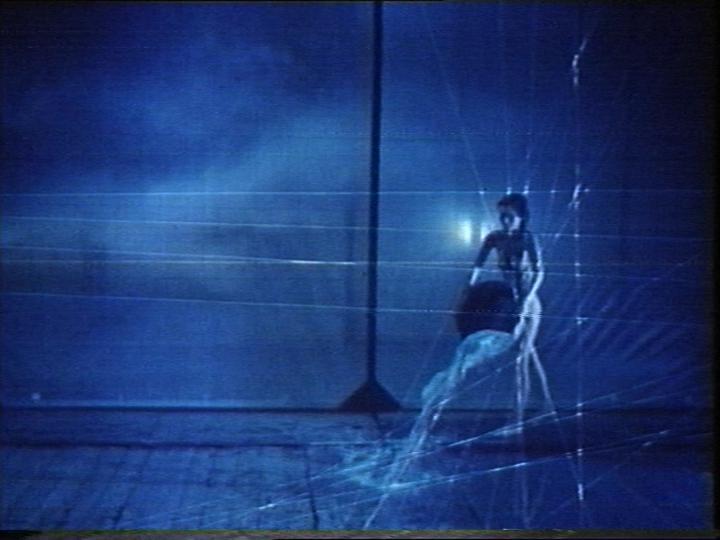 Werk - Homage to Eadweard Muybridge