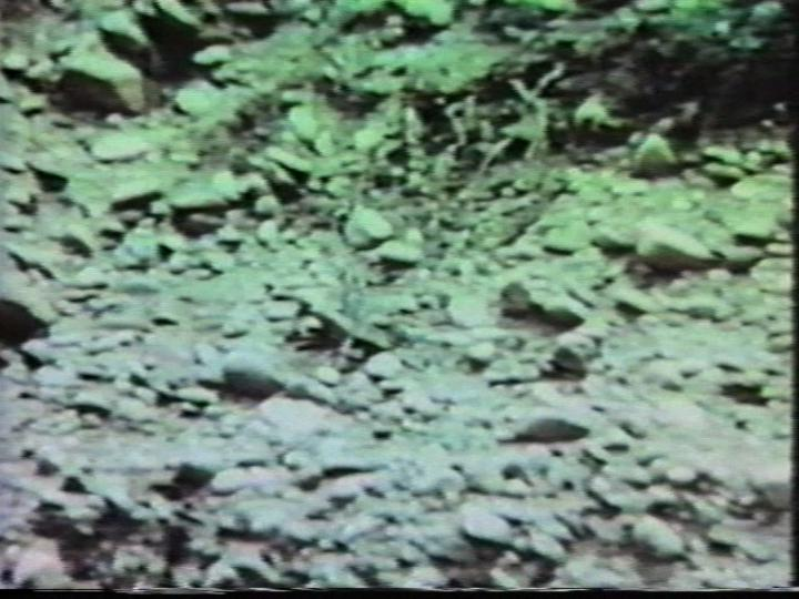 Werk - Landslide #2