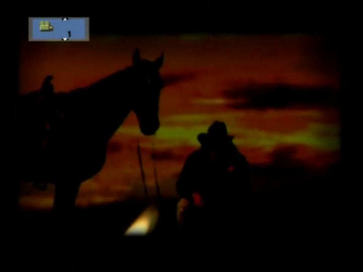 Werk - The Last Cowboy
