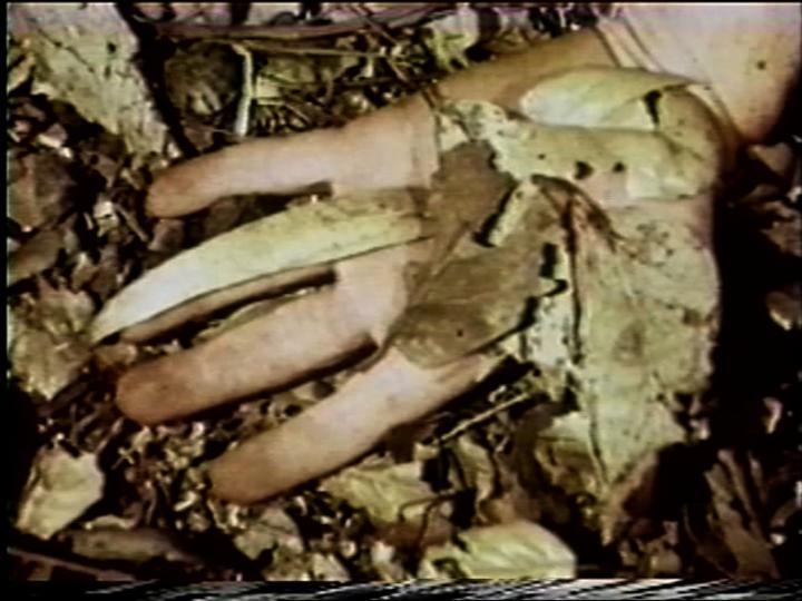 Werk - Leafed Hand