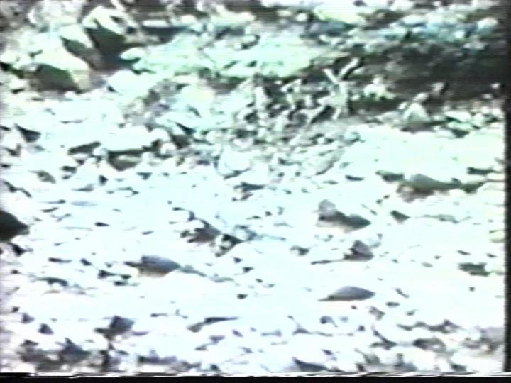 Werk - Landslide