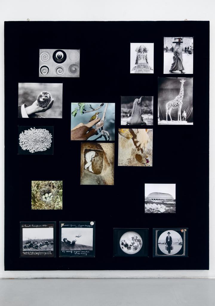 Schwarze Tafel mit farbigen Bildreproduktionen von Linda Fregni Nagler.